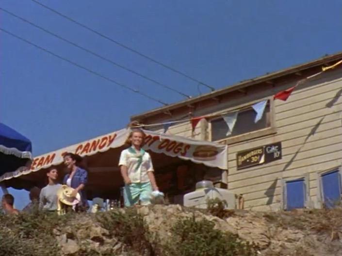 GIdget_surf shack
